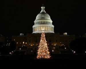 Enjoy the winter holiday traditions while attending university in Washington DC
