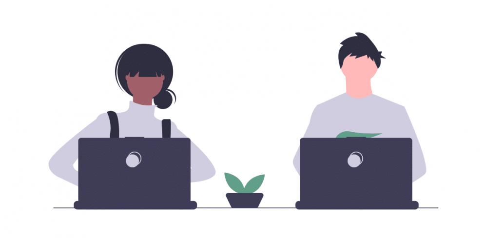 software-developer-types